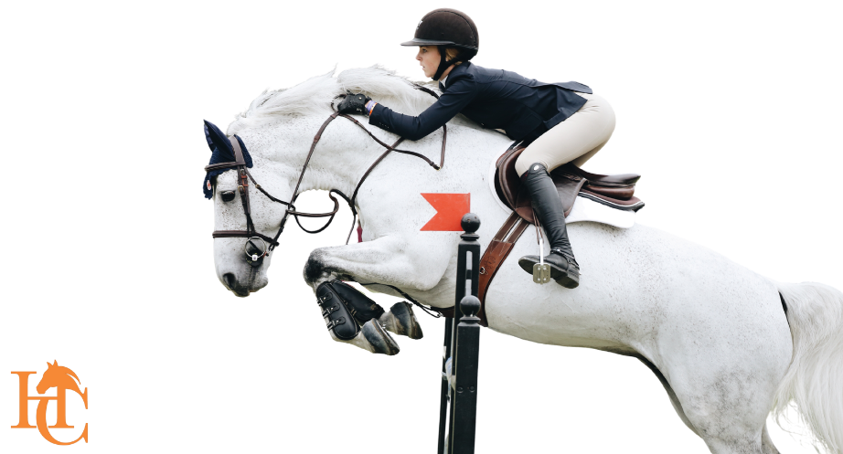 Equestrian & Country Classified Ads