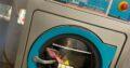 Equine Rug Wash & Repair Essex